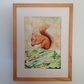 Red squirrel original watercolour painting