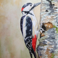 Woodpecker original watercolour painting