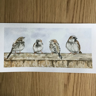Four Sparrows original watercolour painting