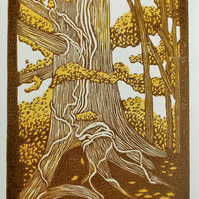 Entwined linocut of tree trunk (near Hadleigh in Suffolk)