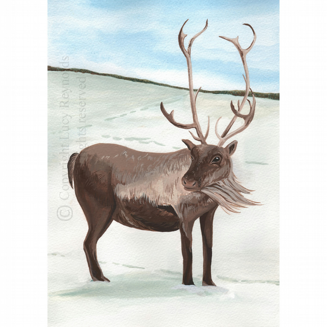 Reindeer Christmas Card (A6 single)