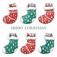 Pack of 4 - 'Cats in Stockings' Christmas Cards