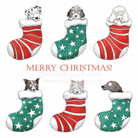 'Dogs in Stockings' Christmas Cards - Pack of 4