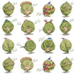Singing Sprouts Wrapping Paper