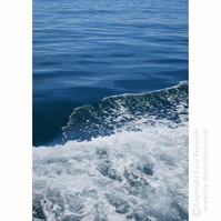 'Wake on the Water' Seascape Greeting Card
