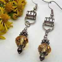 Long Crystal Amber Coloured Drop Crystal Earrings