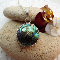 Abalone Shell circle Pendant Necklace in Silver Plate scroll Setting