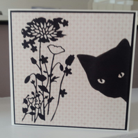 Open black cat card