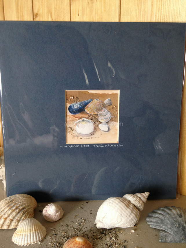 Lindisfarne Shells Mixed Media Seashore Painting