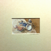 Lindisfarne Shell Mixed Media Painting