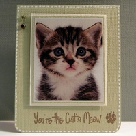 You're the Cats Meow Card