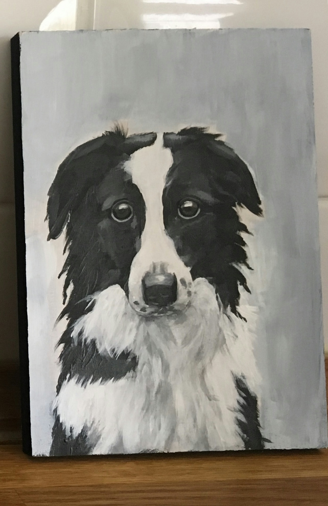 Border Collie original painting