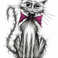 CUTE KITTEN PRINT Naughty shabby scruffy puss A4 size animal image