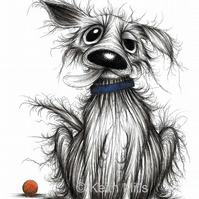 STINKER THE DOG PRINT Very scruffy pet dog with sticky out tongue A4 size image