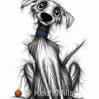 FIDO THE DOG PRINT Lovely pet pooch doggie A4 size animal image picture
