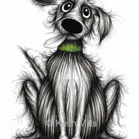 FUZZY FRED PRINT Lovely pet pooch hound dog in green collar A4 size picture