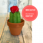 Felt Cactus Craft Kit, Make your own Cactus from Felt, Ideal Christmas Gift