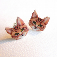 Tabby Cat Earrings, kitten, cat lady, cute, jewellery, illustration