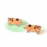 Piglet earrings, pig jewellery, Gloucester old spot pigs,