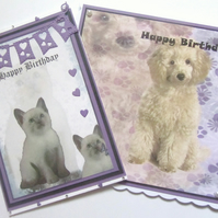 Pack of 2 Animal Birthday Cards.