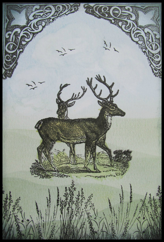 Stag card,Birthday card, .Card for her,Female card, Male card,Animal card