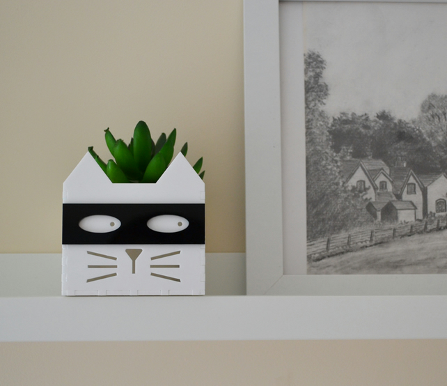 Superhero - supervillian cat planter for house plants succulents and cactus