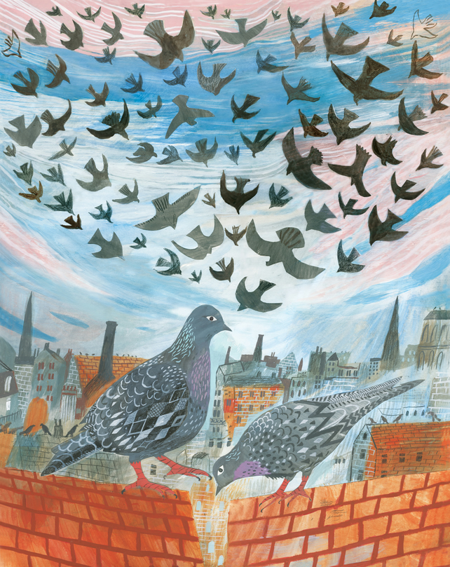 Pigeons on the roof A3 Print