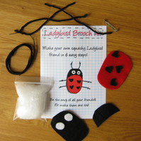 DIY craft kit - felt ladybird valentine's brooch with hearts