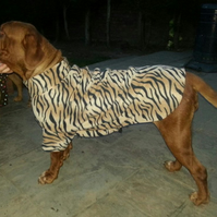 Hand made XXXLarge dog sweater or onesie - made to order mastiff-rottweiller