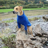 Dog sweater fleece, bespoke Large - suitable for staffy, slim labs etc