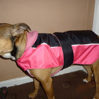 Dog coat -x small hi pink & black- suits chihuahua, small terrier etc