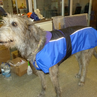 Dog coat, waterproof bespoke XXXXLarge-suitable for wolf hounds, great danes etc