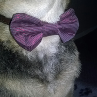 Bow tie for dogs in shimmer purple