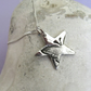 Butterfly star necklace in fine silver