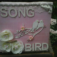 Song bird mini scrapbook album
