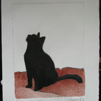 Cute little black cat drypoint etching with watercolour