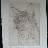 Cute little black cat drypoint etching