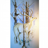 Deer, Come Out of the Cold, Greeting Card