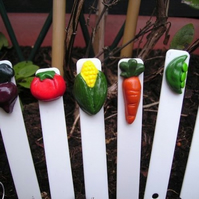 Veggie Tags