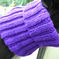 Greyhound Snood - Just Purple