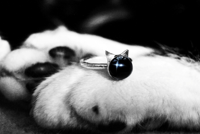 Star Cat --- Sterling Silver & Black Star Diopside Ring