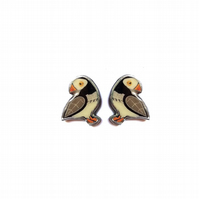 Lovely Whimsical Puffin Ear Studs resin Jewellery by EllyMental