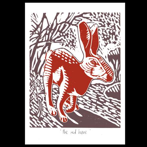 Red Hare greeting card (3 pack)