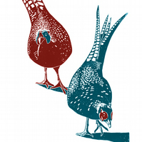 Pheasants A3 poster-print (red-blue)