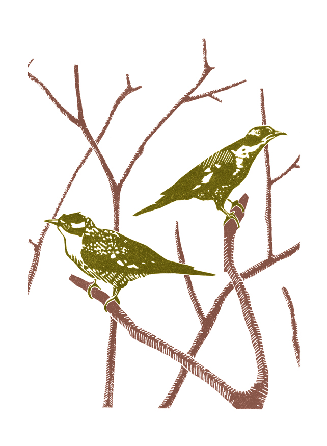 Two Cuckoos poster-print