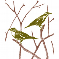 Two Cuckoos A3 poster-print
