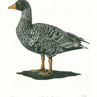Greylag Goose two-colour linocut print