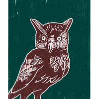 Long-eared Owl poster-print (maroon-dark green)