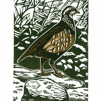 Partridge two-colour linocut print