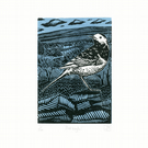 Pied Wagtail two-colour linocut print